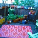 Our deck, summer 2010