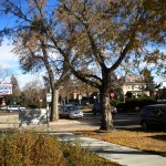 Our street, downtown Colorado Springs, Fall 2010